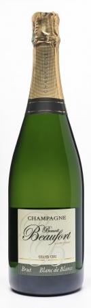 MAGNUM  - BRUT BLANC DE BLANCS Champagne